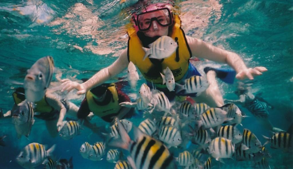 צלילה בקוזומל